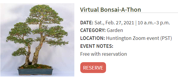 The Huntington Virtual Bonsai-A-Thon